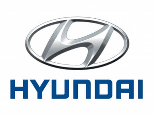 HYUNDAI CHROME 24-00-116