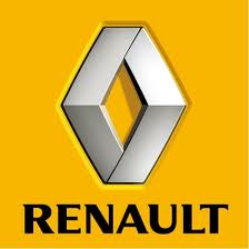 Renault 250110 (182 cup official colour)